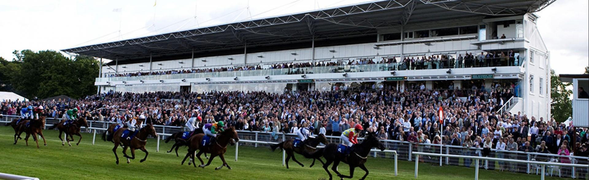 Team Building Scotland: Racecourses