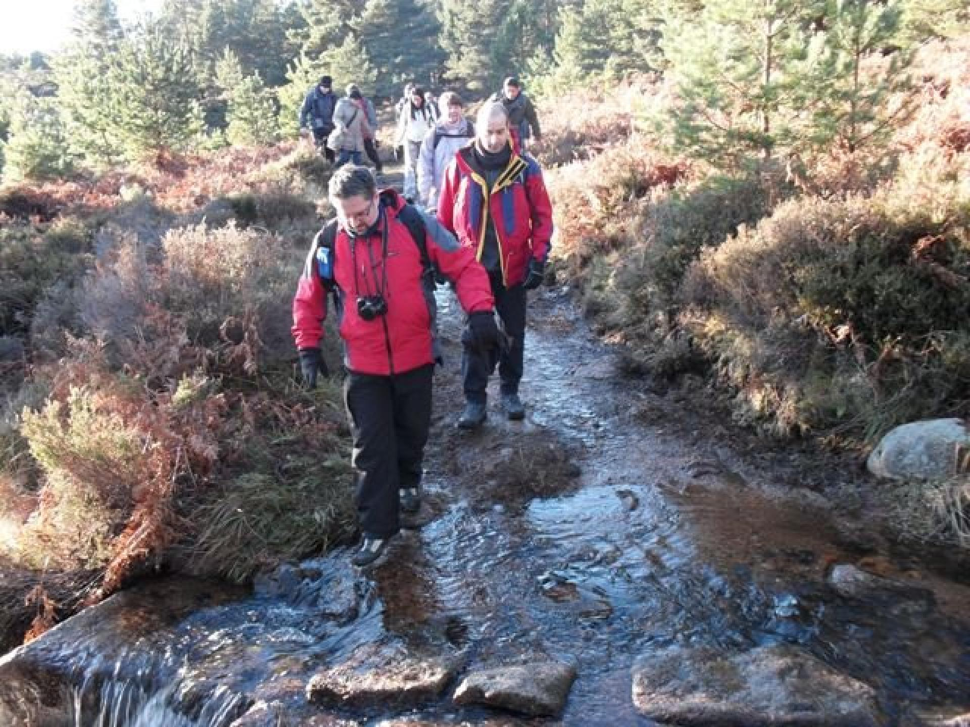 Loch Muick Walk