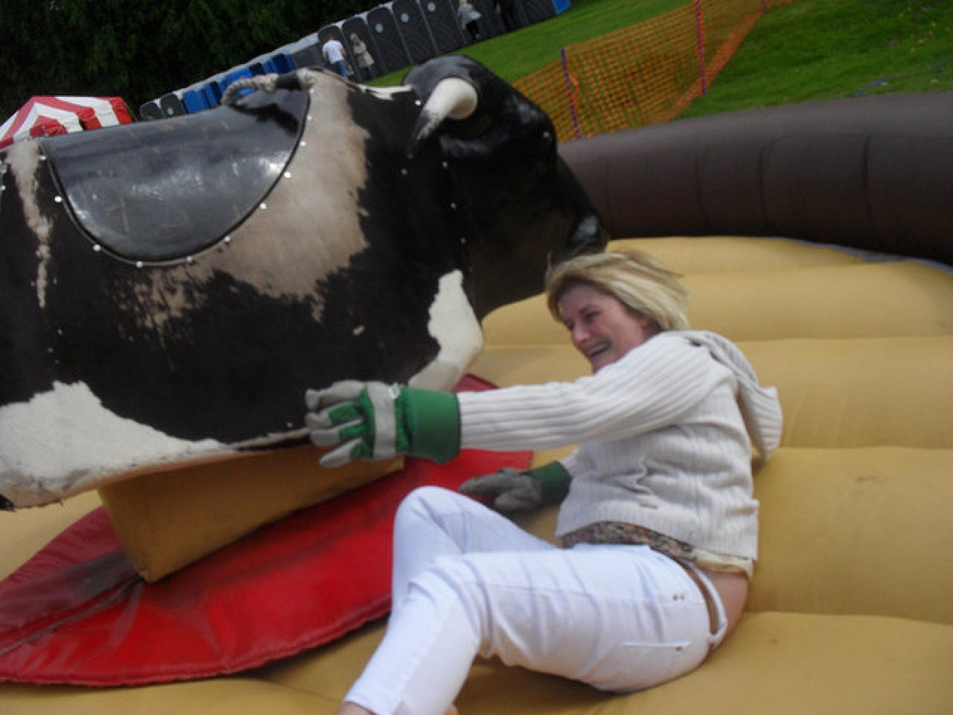 Bucking Bronco - Inflatable Fun
