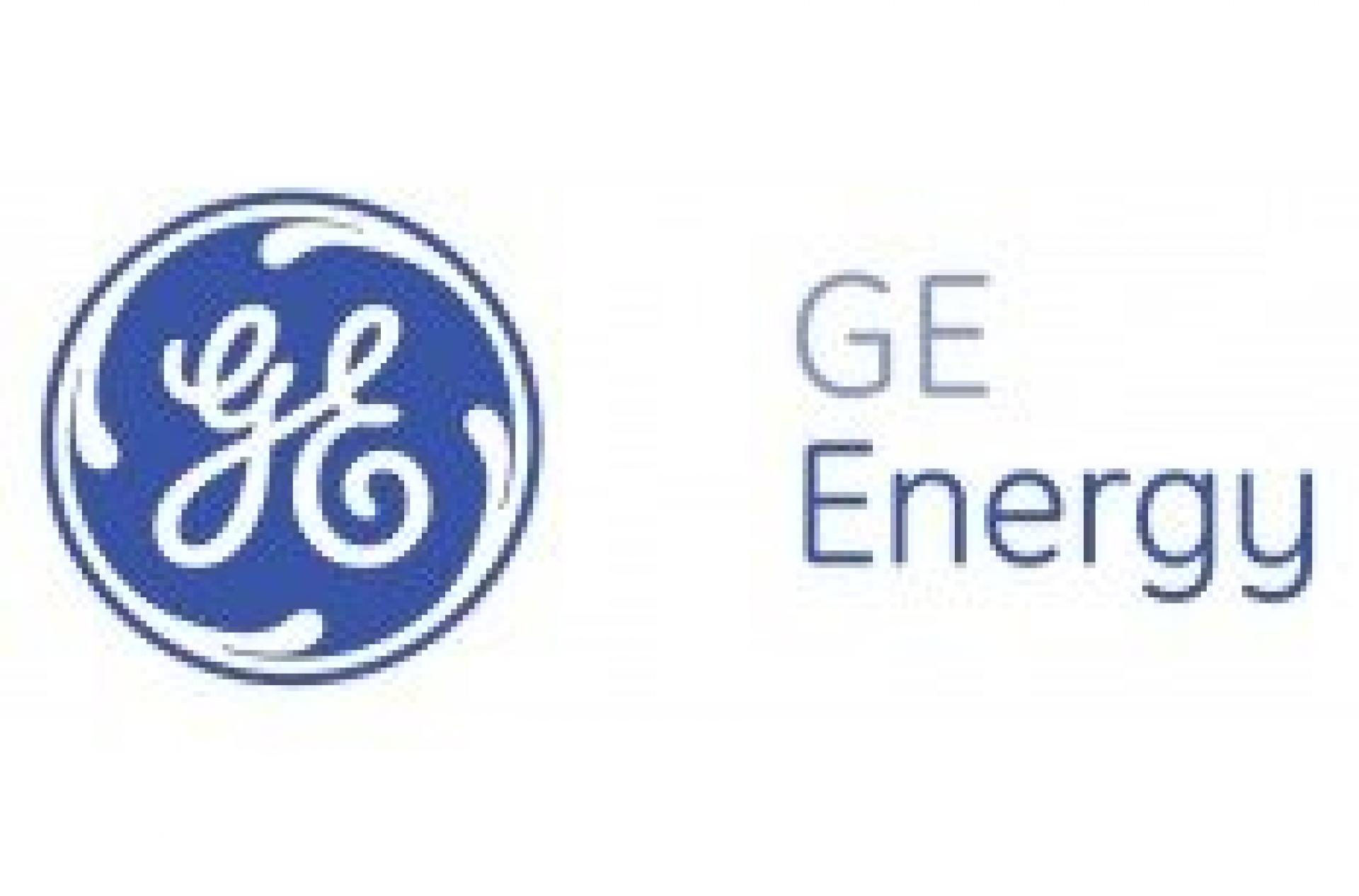 GE Energy's Summer BBQ Fun Day