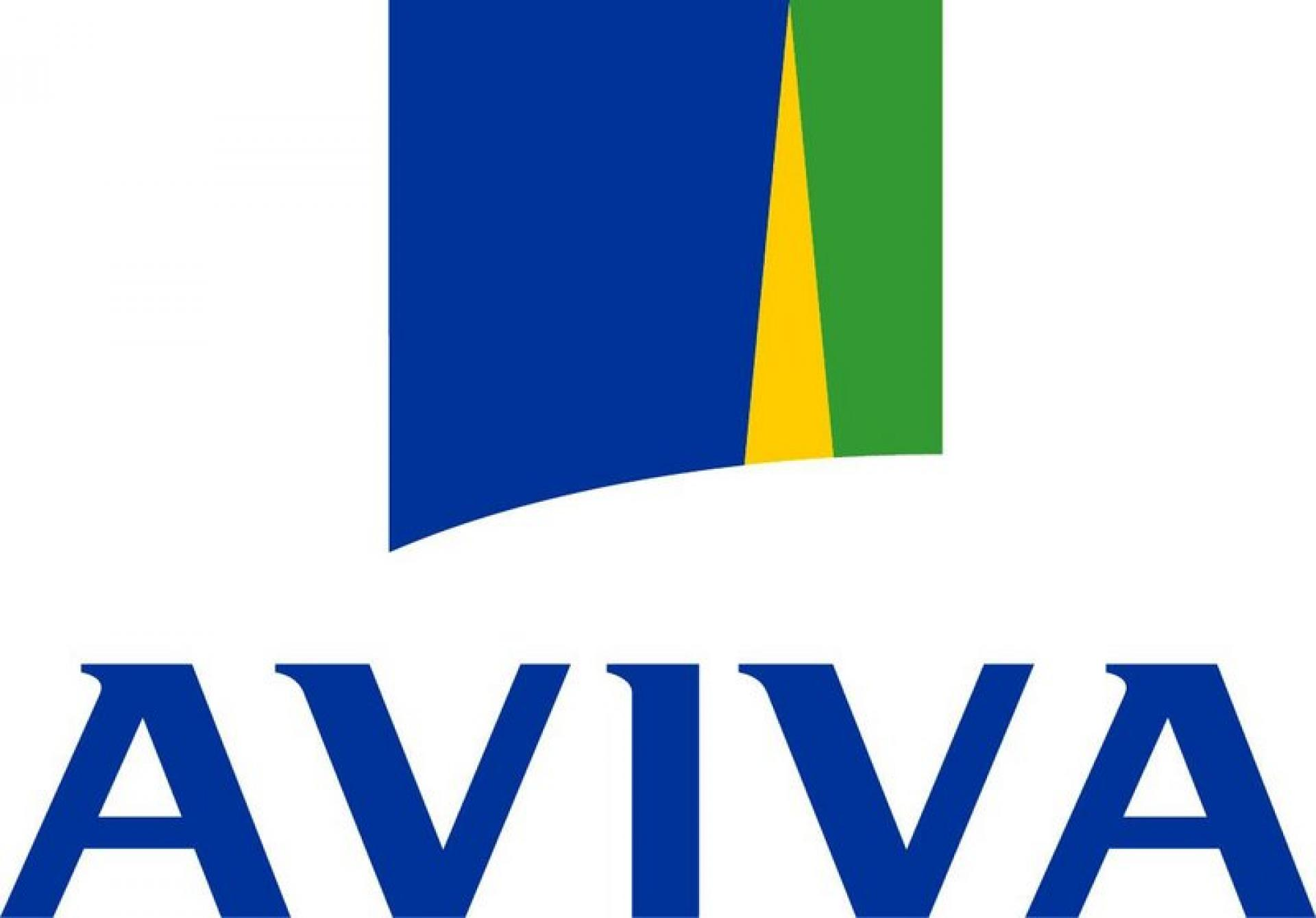 Aviva's Summer BBQ Fun Day